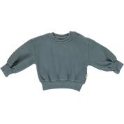 Poudre Organic Sweatshirt Cedrat, Stormy Weather